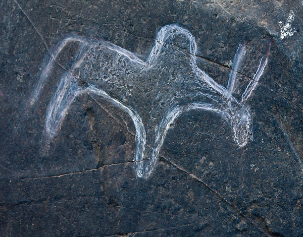 Close-up of prehistoric rock art in Mauxi, Goa<br>5D, 24-105L