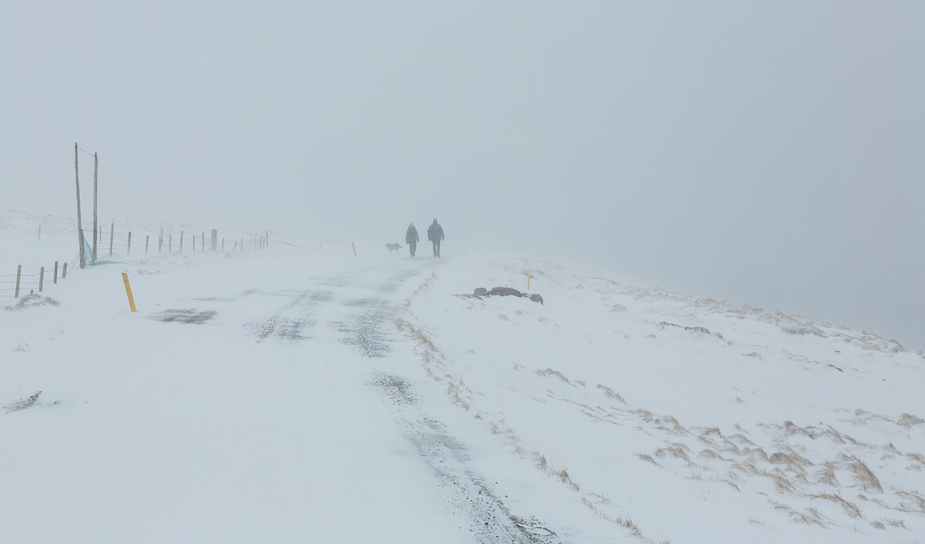 Couple out on a walk in snow storm