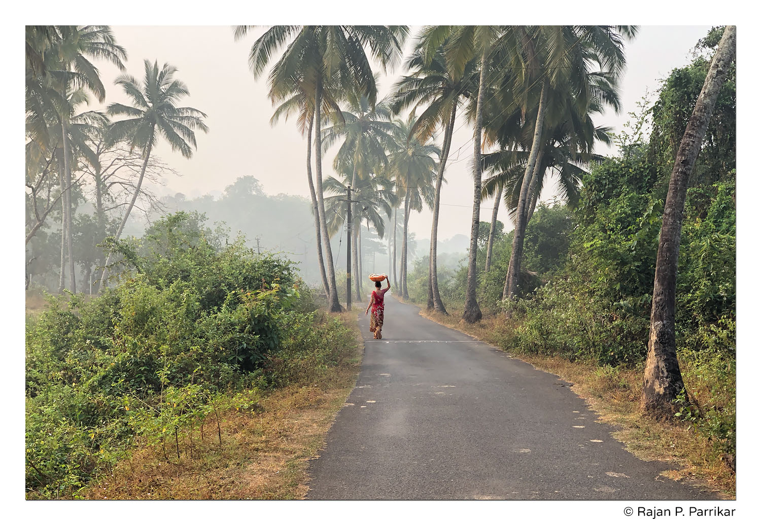 Fisherwoman on her rounds in Talaulim, Goa