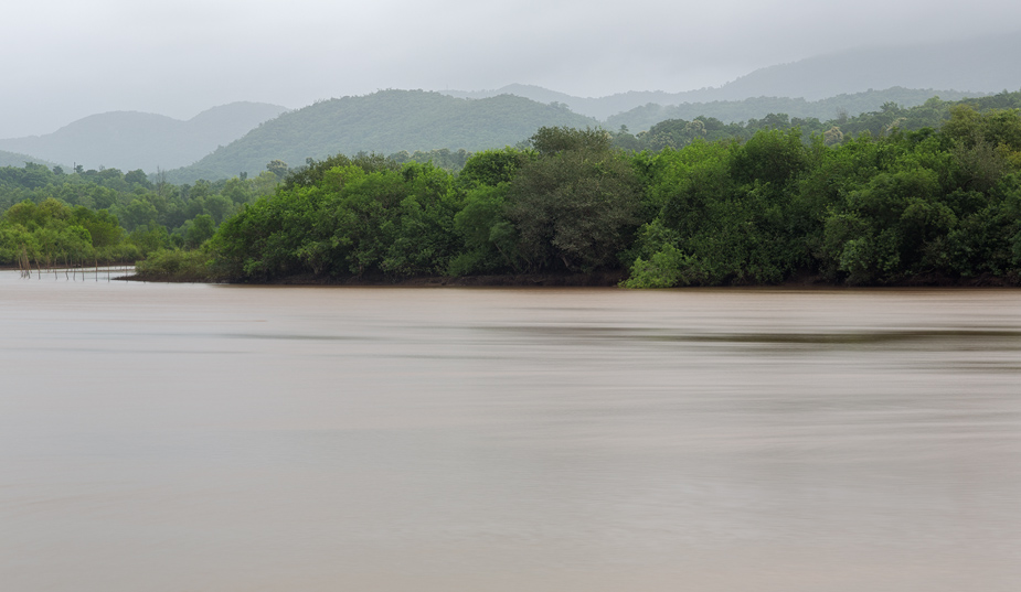 Monsoon morning on Talpona river, Canacona