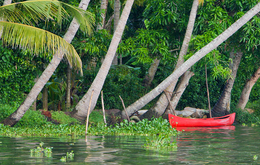 Backwaters at Alappuzha, Kerala<br>5D, EF 70-200 f/2.8 L IS