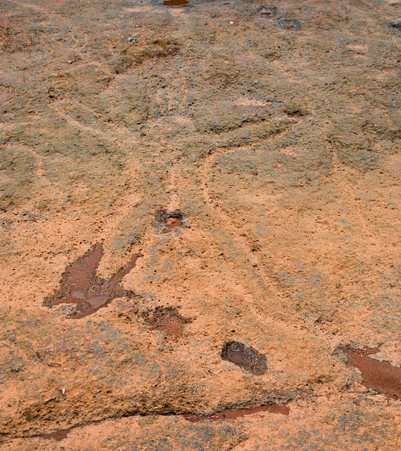 Prehistoric rock art in Usgalimol, Goa<br>5D, 24-105L