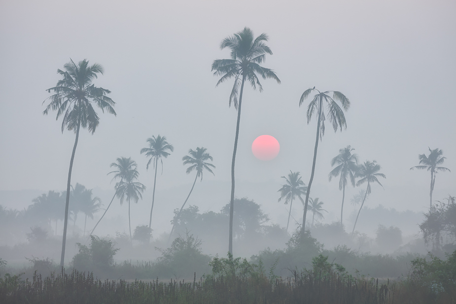 Sunrise in Saligao, Goa