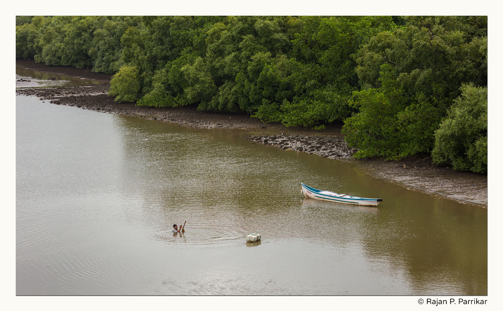 Digging for clams in Nerul river, Goa